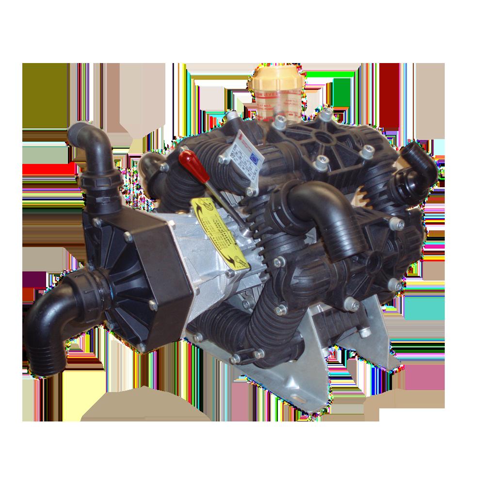DMP 600